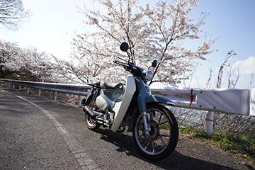 DSC00788_21mm.jpg
